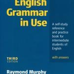 in_use_grammar